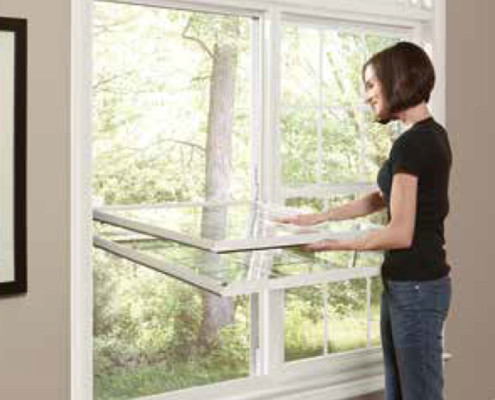 Regina Window & Exterior Double Hung Window